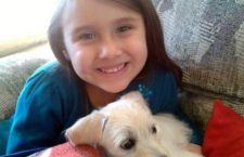 Scomparsa nel nulla nel 2012: ritrovati purtroppo i resti della piccola Isabel
