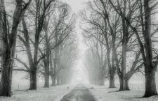 Domenica 14 Maggio – A volte la verità mi sembra fredda