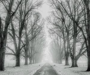 Domenica 14 Maggio - A volte la verità mi sembra fredda