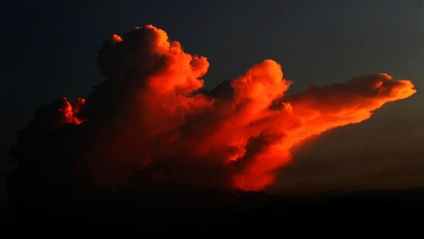 Sabato 24 Giugno - Tutto ciò che viene da Dio