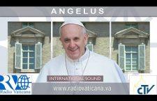 Angelus con Papa Francesco. Domenica 11 Giugno 2017 REPLAY TV