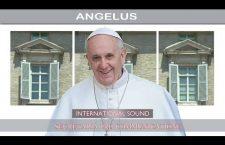 Angelus di Ognissanti con Papa Francesco. Mercoledì 1 Novembre REPLAY TV