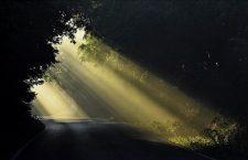 Se la tua vita è ingabbiata da una lato oscuro non preoccuparti: lascia entrare Dio e la luce tornerà