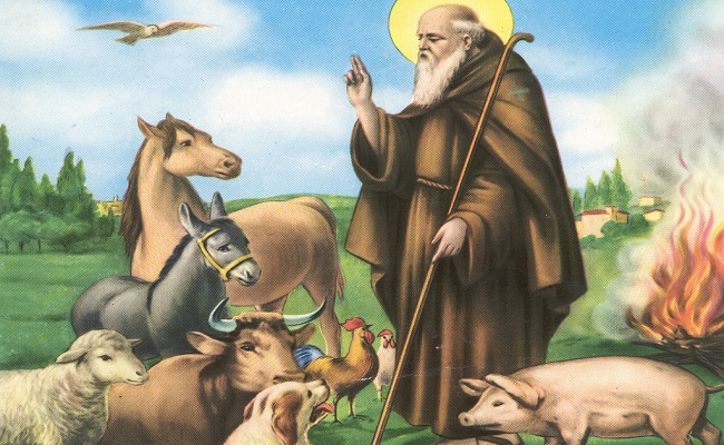 ultimo giorno novena sant antonio abate