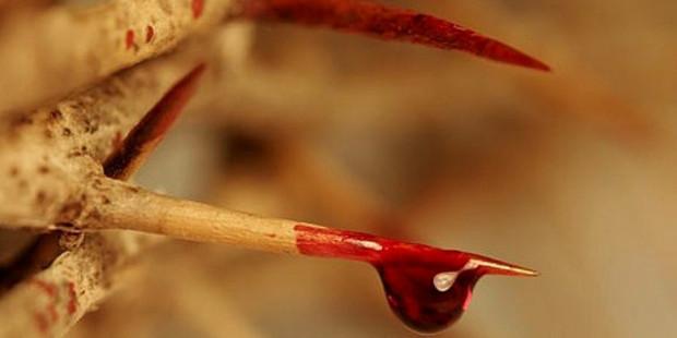 spine sangue di gesù