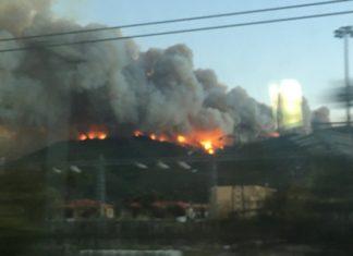Incendio Pisano
