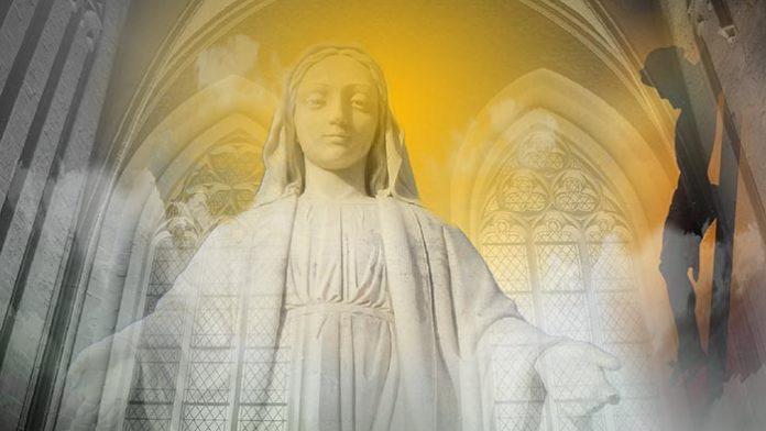 Ogni giorno una lode a Maria, 11 Novembre 2020. Donna della Festa, prega per noi