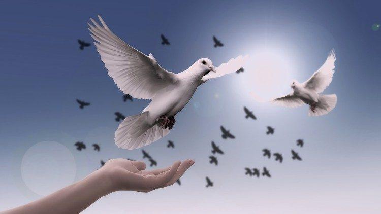 giornata mondiale pace 2019