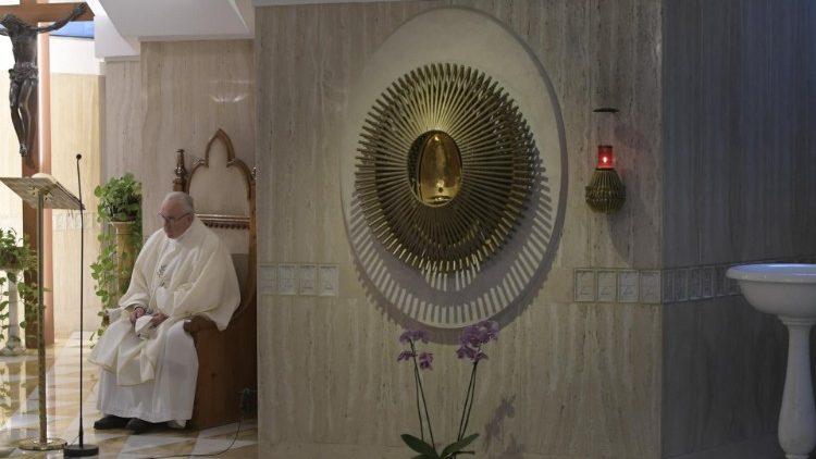 papa francesco 5 novembre