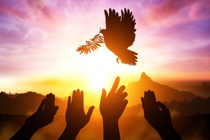 giornata-mondiale-internazionale-pace-frasi_0