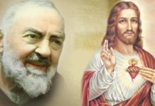 Padre Pio Sacro Cuore