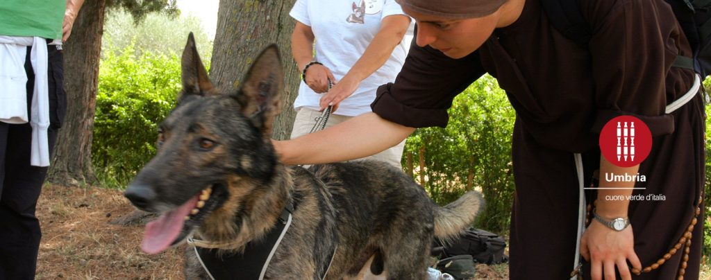 via-di-francesco-pellegrinaggio-san-francesco-in-cammino-con-il-cane