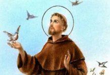 San Francesco novena