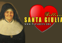 Santa Giulia Billiart Vergine, Fondatrice