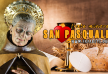 San Pasquale Baylon, Frate minore