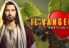 Vangelo 23 Luglio frutto