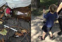 bambino-4-anni-genitori-tossici