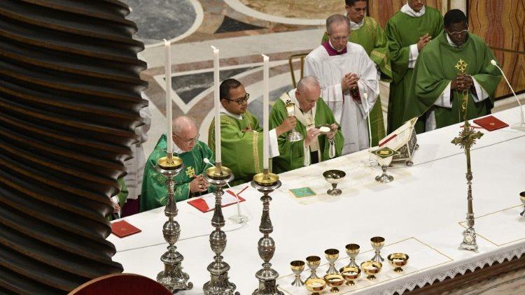 Angelus, il Papa: ogni battezzato cooperi all'annuncio della Parola