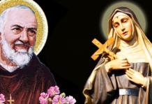 Padre Pio Santa Rita