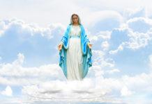 8dicembre2019.immacolata.concezione.preghiera