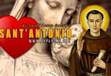 Sant'Antonio di Sant'Anna Galvão,