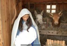 Presepe in Vaticano Natale 2019