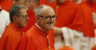Amazzonia. Cardinal Czerny 'La salvezza di questa regione è fondamentale per il mondo'