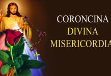 Coroncina Divina Misericordia