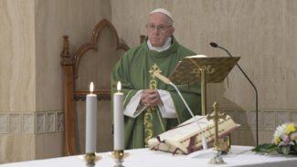 Papa Francesco 'L'invidia è un tarlo che ti spinge a distruggere, a sparlare, a annientare l'altro'3