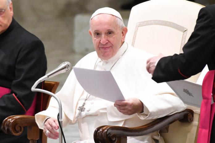 Papa Francesco in udienza 'Il mite non è un accomodante ma è il discepolo di Cristo'3