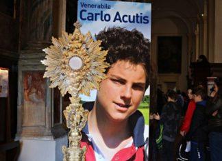 carlo.acutis