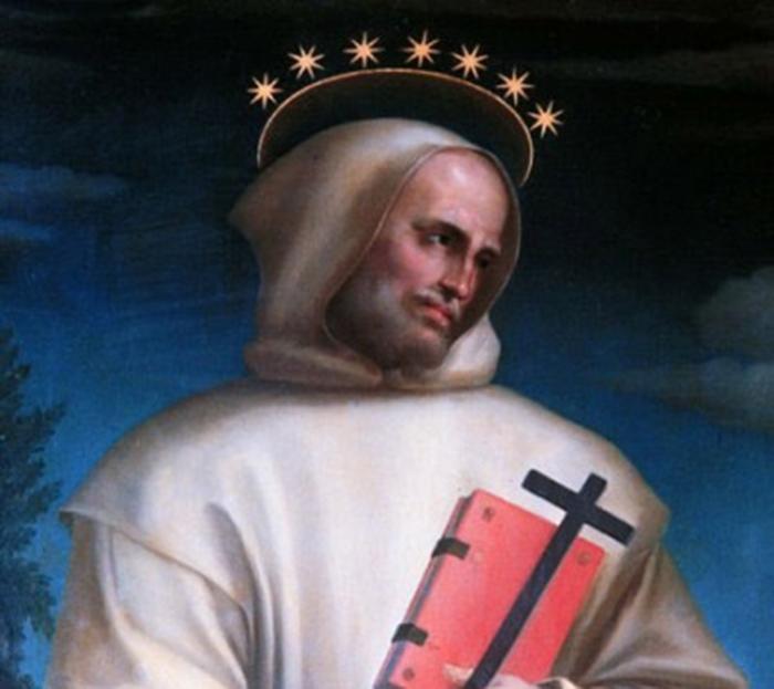 Sant'Ugo di Grenoble, Vescovo