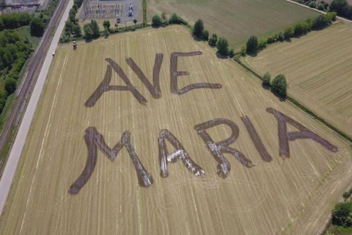 In the fields of Manerbio (Brescia) Ave Maria