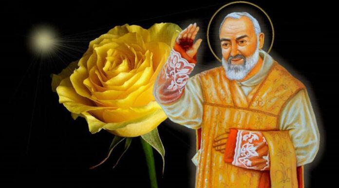 Padre Pio (The Voice of Saint Padre Pio - Facebook)