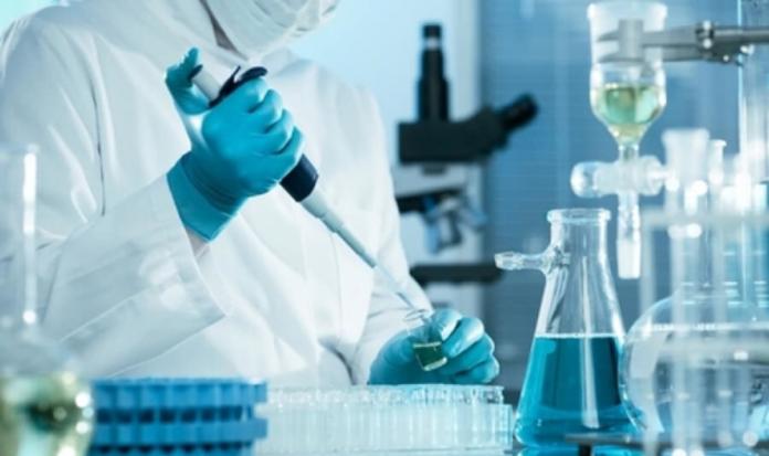 Cure Leucemia (Report Pistoia)