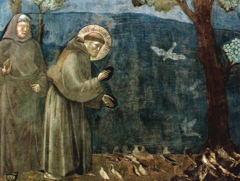 Il buongiorno in compagnia di San Francesco, 21 Ottobre 2020
