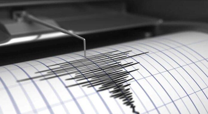 Terremoto di magnitudo 8.1 al largo della Nuova Zelanda