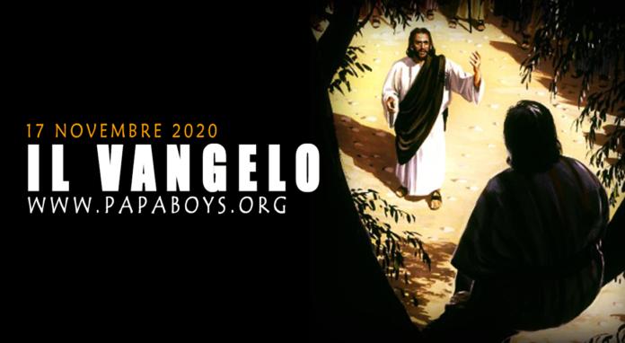 Vangelo di oggi, 17 Novembre 2020