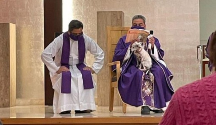 Sacerdote celebra la messa con il cane malato in grembo