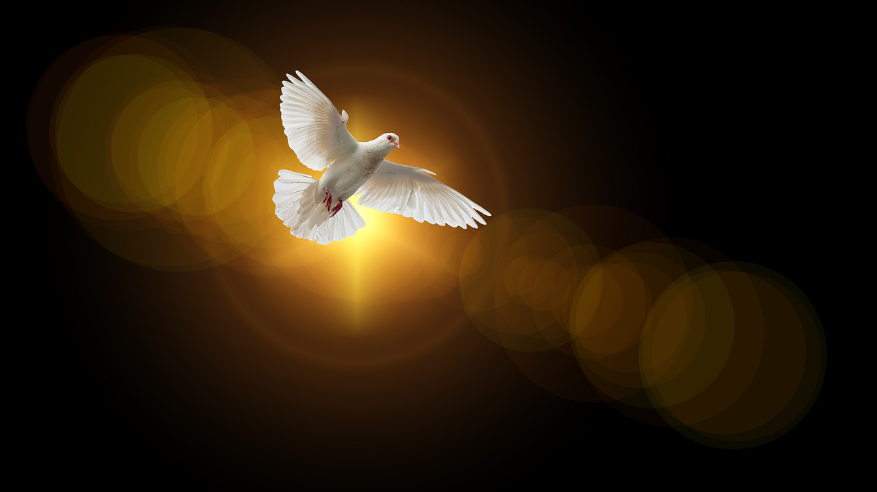 Vangelo della Domenica di Pentecoste