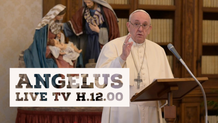 Angelus di Papa Francesco