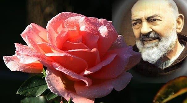 Padre Pio da Pietrelcina: il frate devoto della Madonna