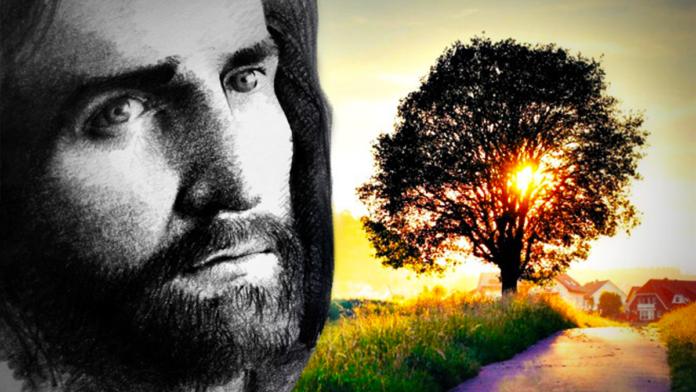 Il Vangelo del giorno: Sabato, 18 Settembre 2021